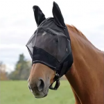 Why do Horses wear Masks when Racing