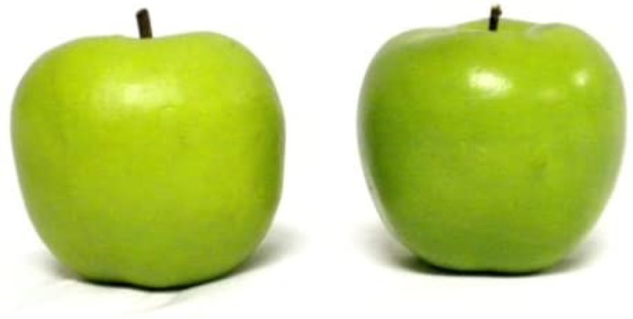 can horses eat green apples